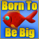 Born to be Big