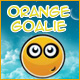 Orange Goalie