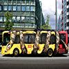 Wild Forest Bus